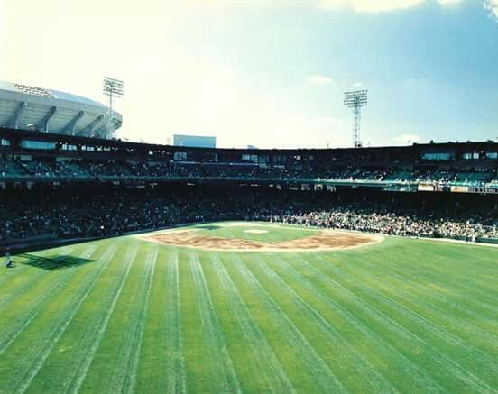 View From Centerfield Of Comiskey Park Comiskey Park Chicago History Park