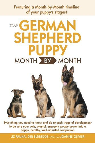 Pin By Hayley Cawthon On Sayings German Shepherd Training