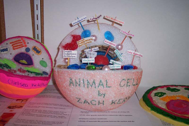 Calhoun Christian School Craft Show