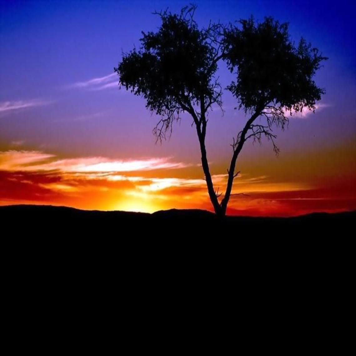 sunset wallpaper . jpg