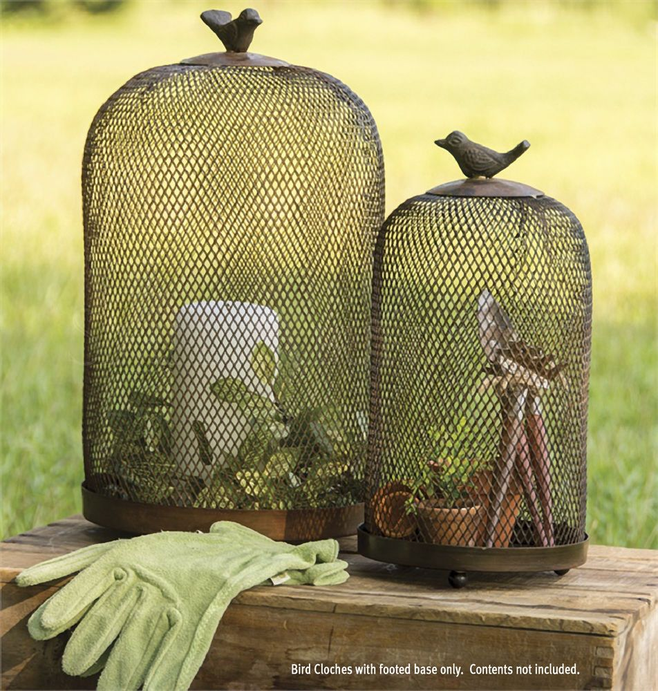 Set of Two Bird Cloches with Footed Stands by Park Designs, Rusty Brown Iron. #SimplyAbundant #Cloche