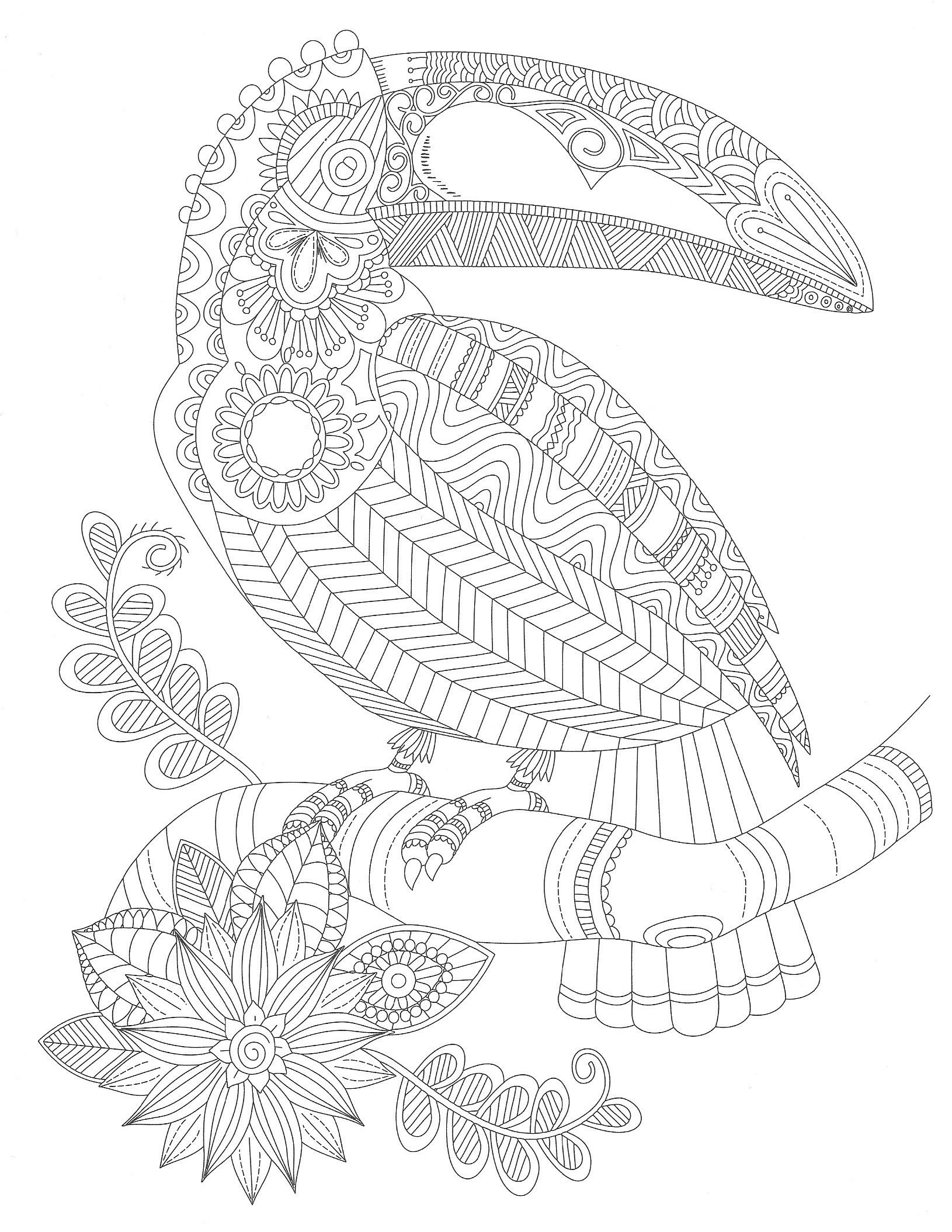 tukan dschungel | PATTERNS , COLORING PAGES AND MORE... | Pinterest ...