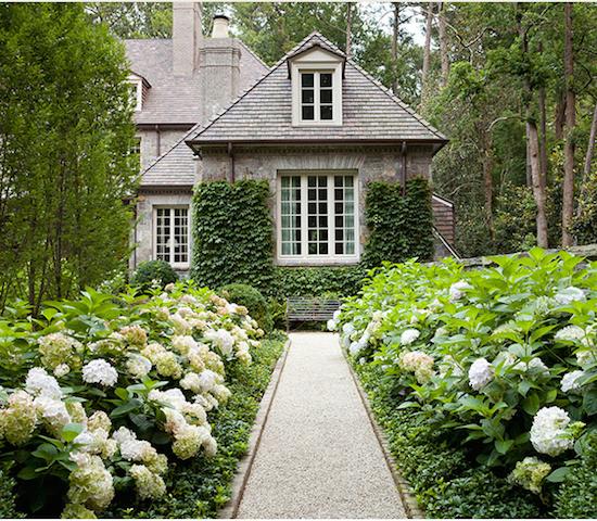 The Zhush Dream garden and Hydrangea