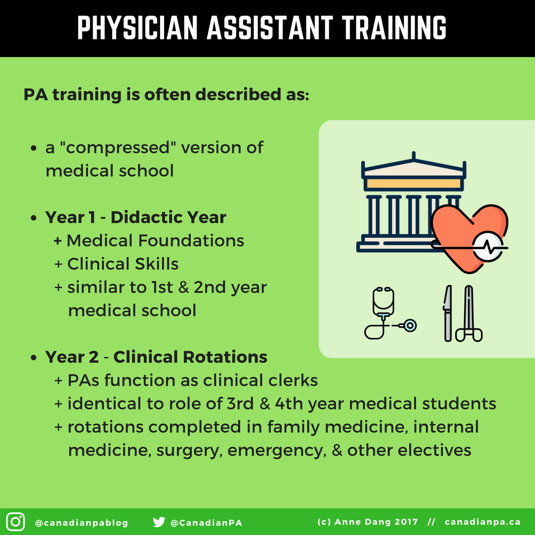 Physician Assistant Education Physician Assistant Student Physician Assistant Medical School Motivation