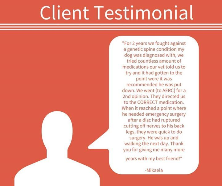 Client review for Animal Emergency & Referral Center of