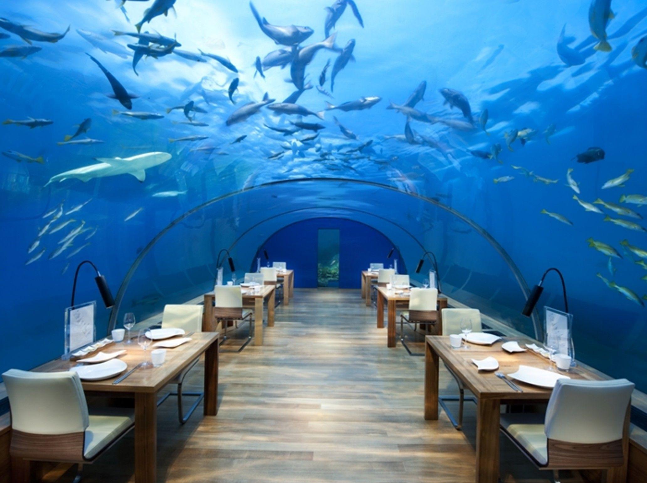Malediven Tipps Fur Das Paradies Unterwasser Hotel