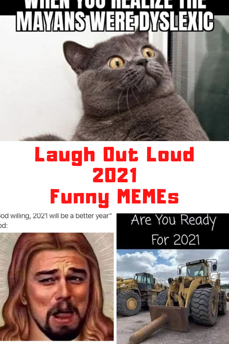 The Best 2021 Memes On The Internet Guide For Moms In 2021 Funny Memes Really Funny Memes