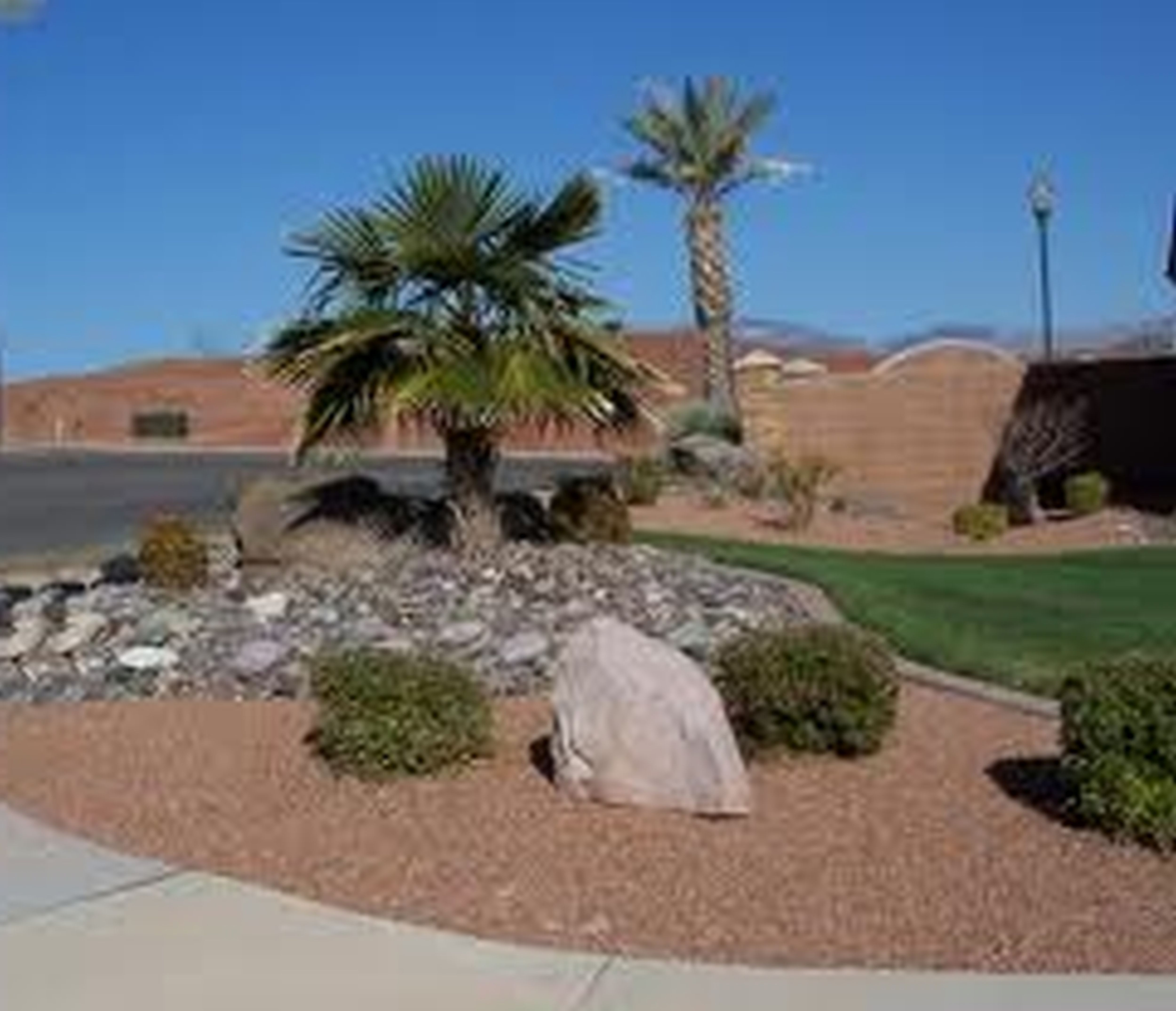 Desert Front Yard Landscaping Ideas Part - 31: Front Yard Desert Landscape Design