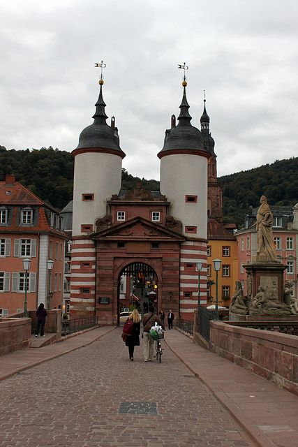 heidelberg germany germany pinterest heidelberg austria and castles. Black Bedroom Furniture Sets. Home Design Ideas