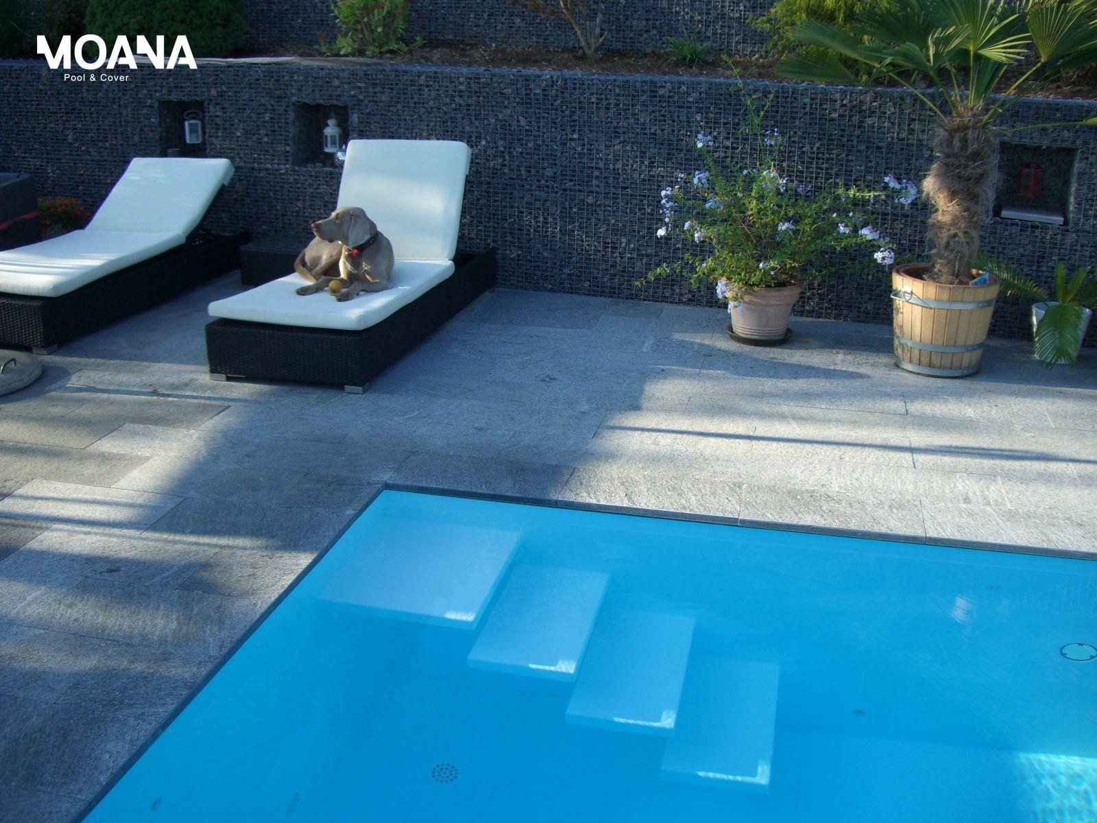 schwimmbad mit verdeckter berlaufrinne und herzigem hund schwimmbad kunststoff pinterest. Black Bedroom Furniture Sets. Home Design Ideas