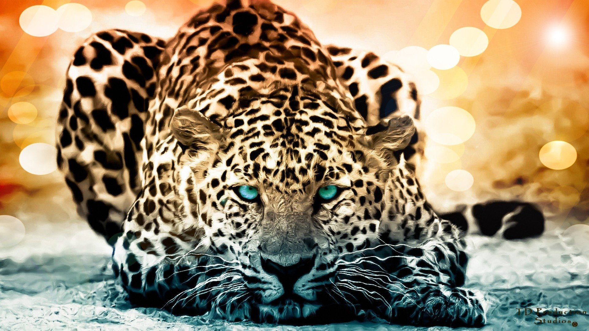 Jaguar wallpaper hd