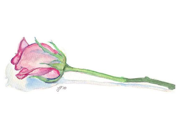 Items Similar To Watercolor Painting Flower Art Illustration Single Pink Rose Print