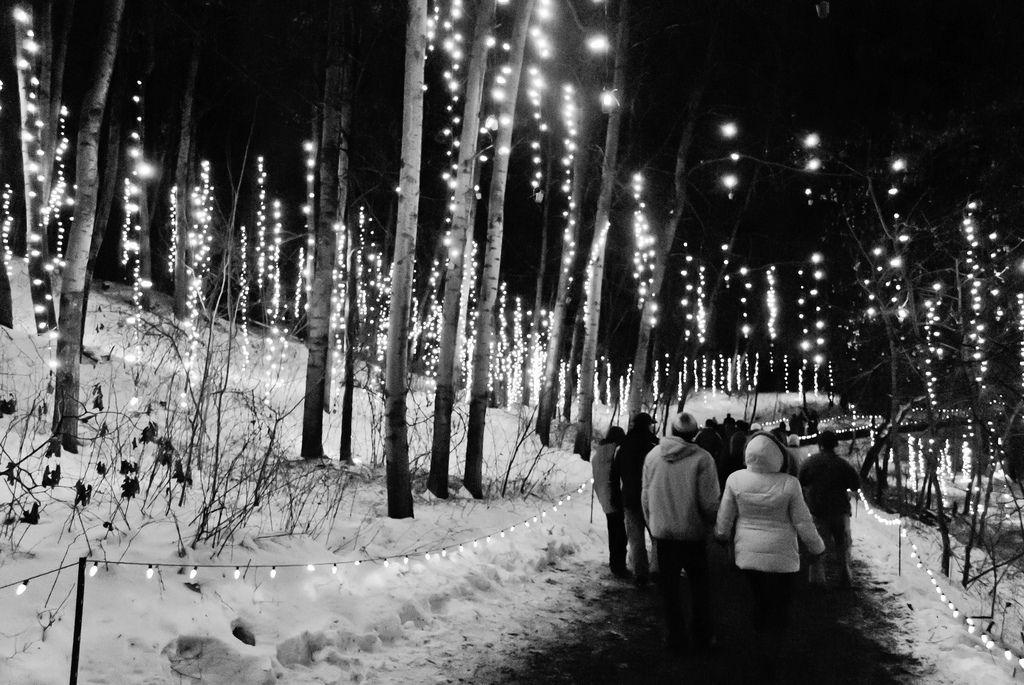 """Garden Of Lights Green Bay Mark David Zahn Green Bay 59366 """"snow Shower Of Light"""" In"""