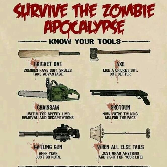 Pin On Information Graphics Zombie Apocalypse