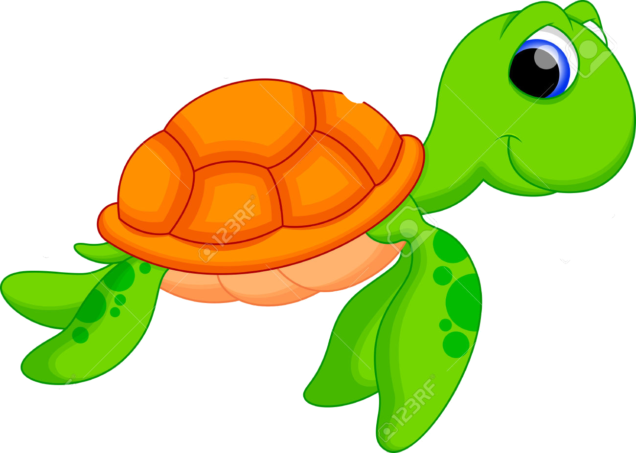 Turtle Vector Png Turtle Png Image And Clipart