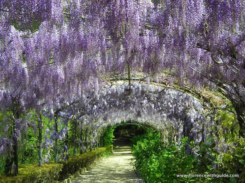 Il giardino e il museo stefano bardini florence with for Giardino firenze