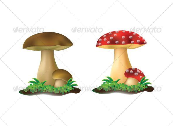 Plain Mushroom Poker