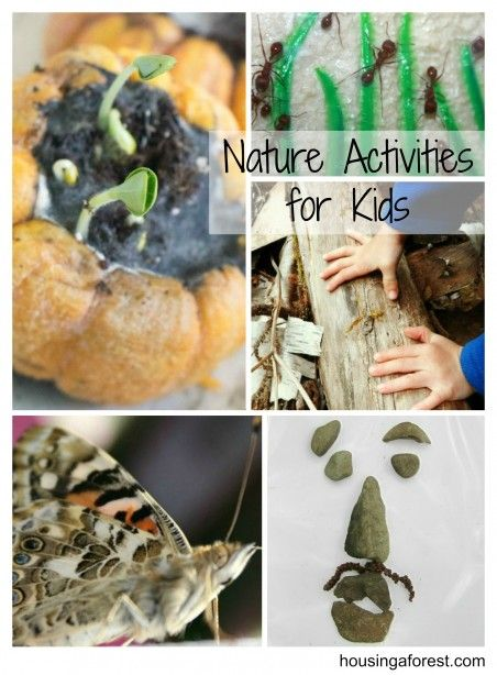 Nature Activities for kids ~ lots of fun ideas to learn and play with Mother Nature:)