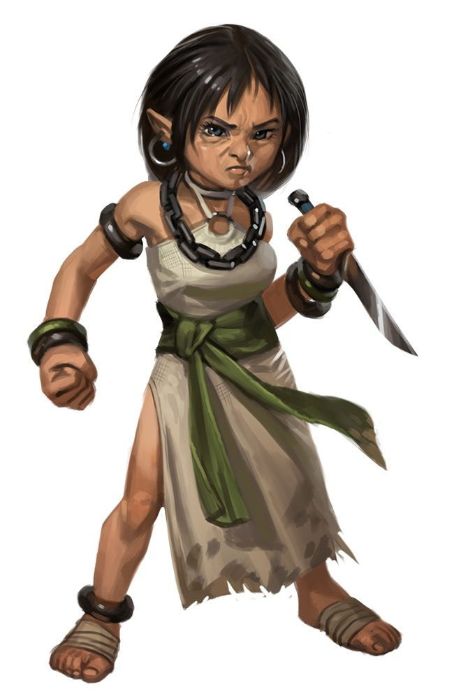 Female Gnome: Image Result For D&d Gnome Barbarian