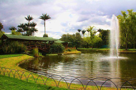 Fotos de Jardin Botanico Jose Celestino Mutis: Dale un vistazo a 702 ...