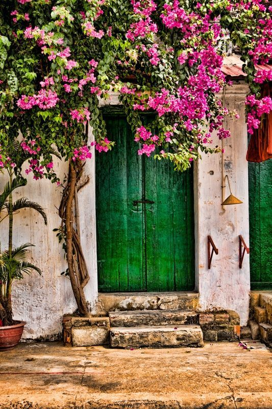 Green Door Fuchsia Bougainvillea Old World Stone