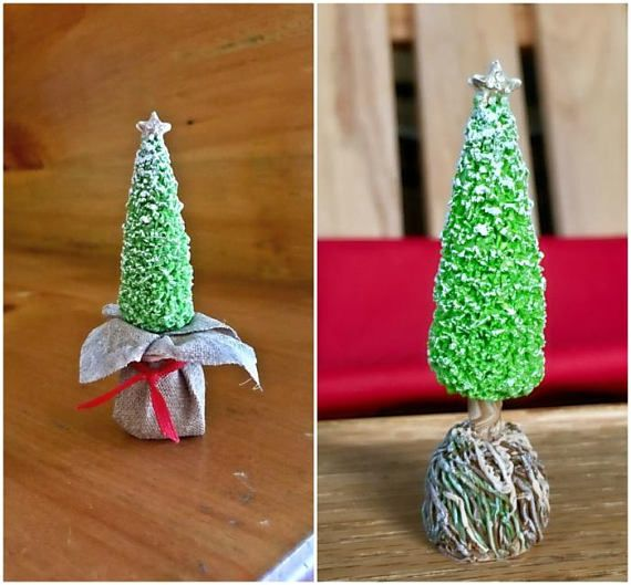 Rooted Christmas Tree: Christmas Tree Holiday Miniature Live Trees Root Ball