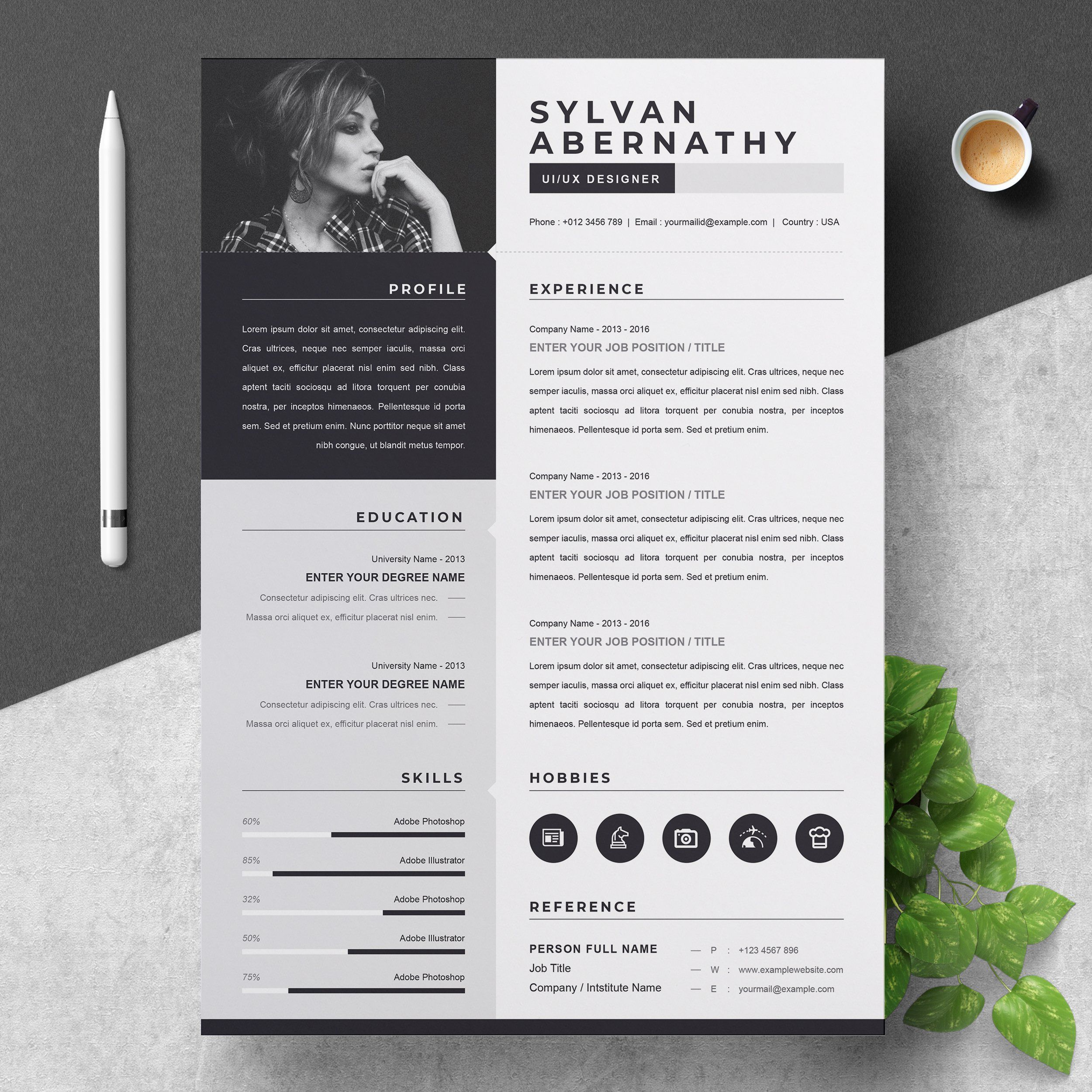 One Page Resume Cv Template One Page Resume Cv Template Resume Cv