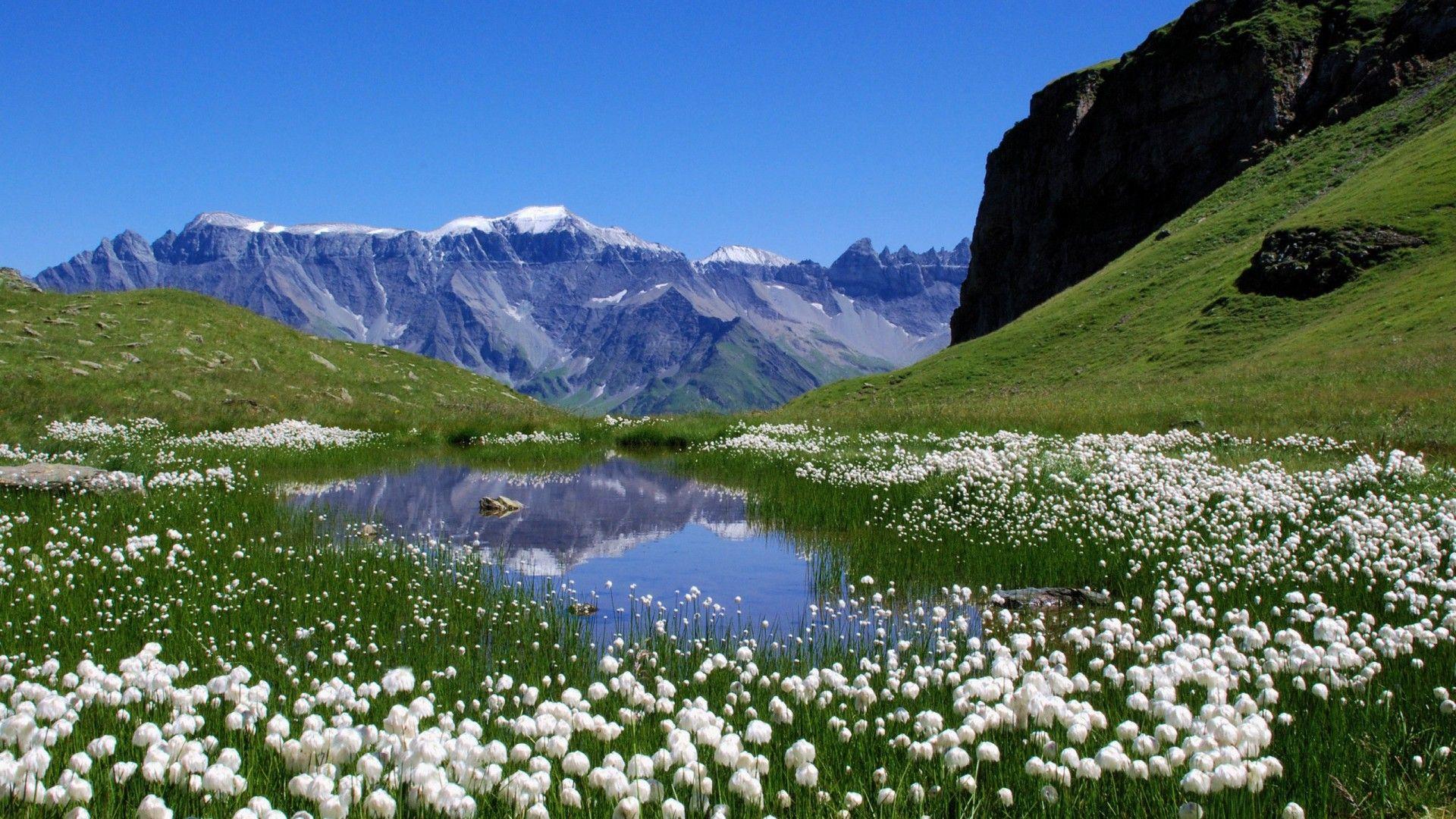 Oma Wathen Top Hd Swiss Wallpapers Hdq Beautiful Nature Spring Beautiful Nature Mountains