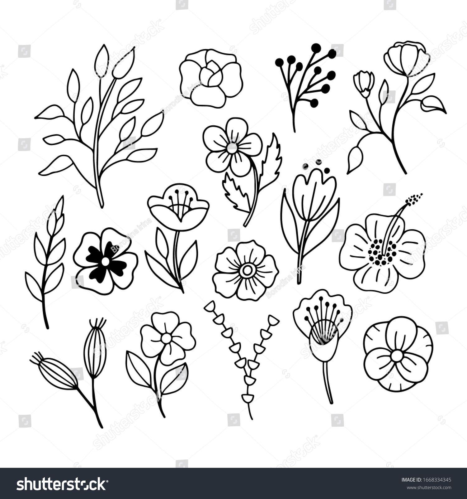 Vector Linear Image Leaves Flowers On Temaju Stockvektorkep Jogdijmentes 1668334345 In 2020 Flower Images Leaf Flowers White Flowers