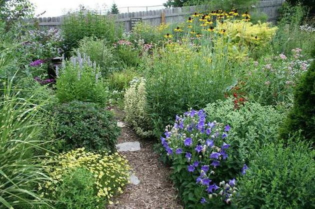 Un Jardin Sauvage Avec Images Jardins Champetres Jardins
