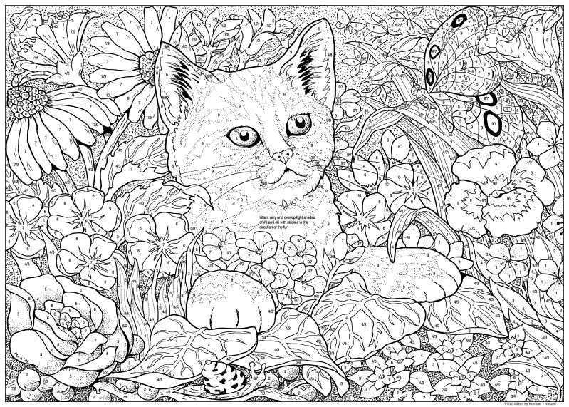 Kitten Color By Number Animal Coloring Pages Kittens Coloring Cat Coloring Page