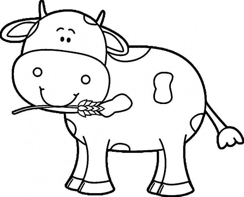 Dibujos De Vacas Para Colorear Fotos De Vacas Dibujos De Animales