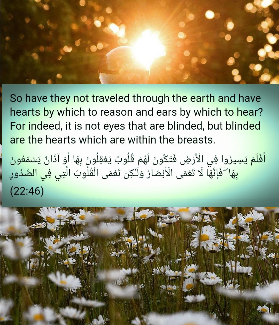 Surah Al Hajj Quran Words Prayers