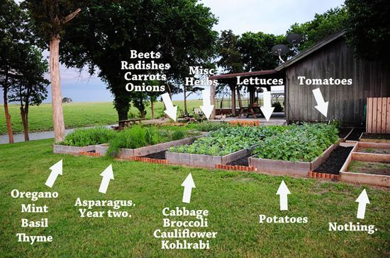 Love these raised beds with walkways in   http://thegardendecorationsaz.blogspot.com