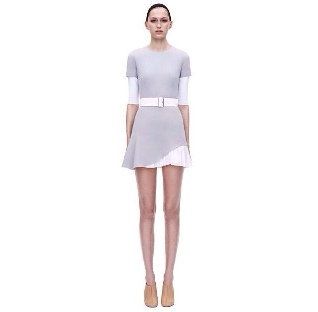 2014 Victoria Beckham Dress Skirt