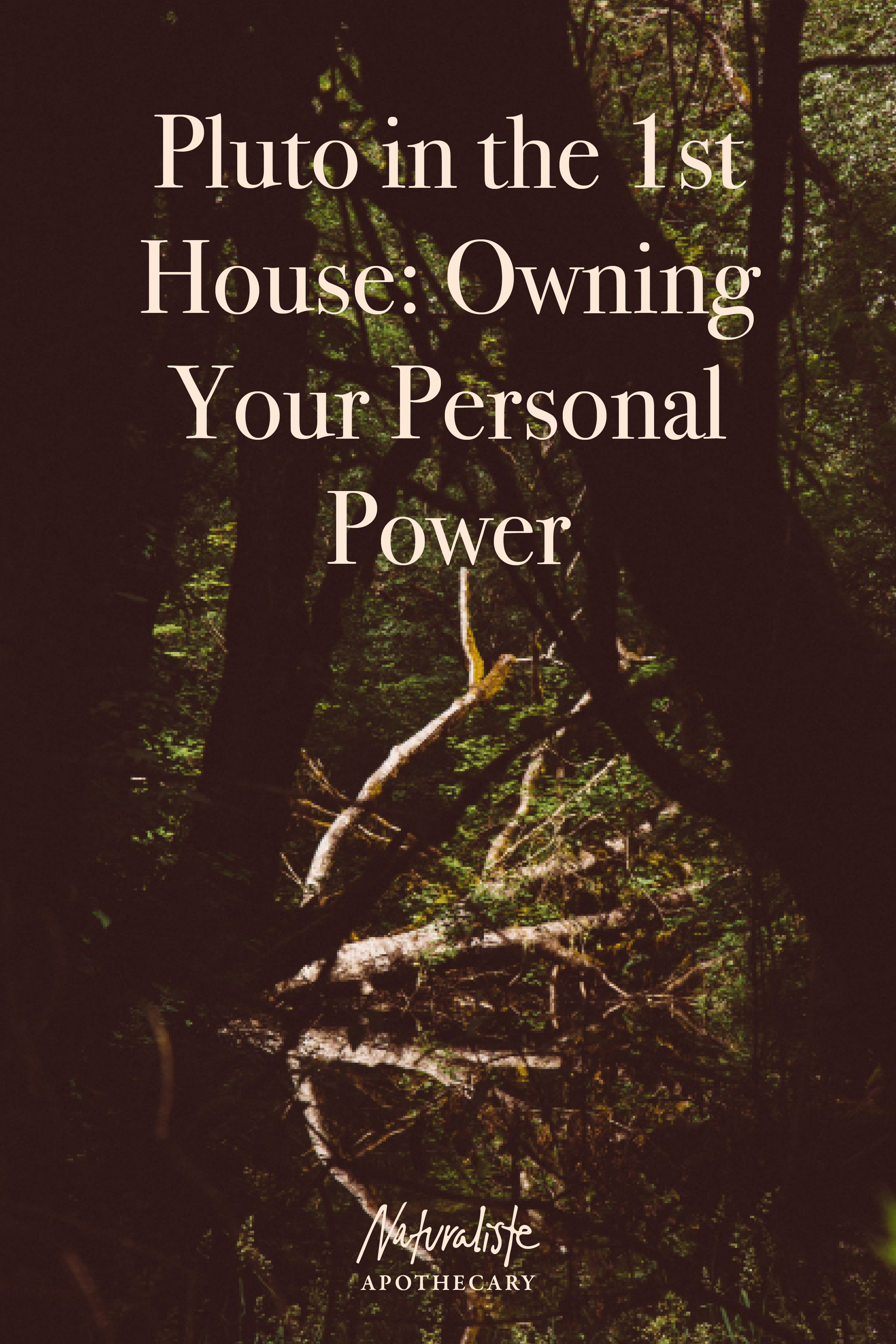 Pluto In The 1st House Owning Your Personal Power