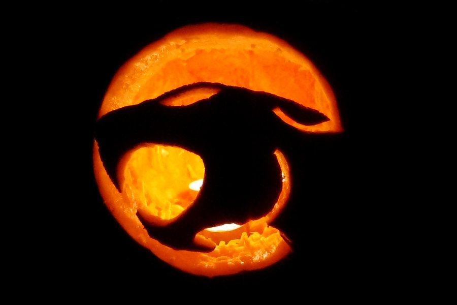 Thundercats hoooooooe by stephiet on deviantart moonghtn cat pumpkin carving thundercats thundercats hoooooooe by stephiet on deviantart maxwellsz