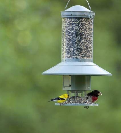 Plants Planters And Treats To Delight Gardeners This Holiday Season Bird Feeders Bird Seed Feeders Backyard Birds Feeders