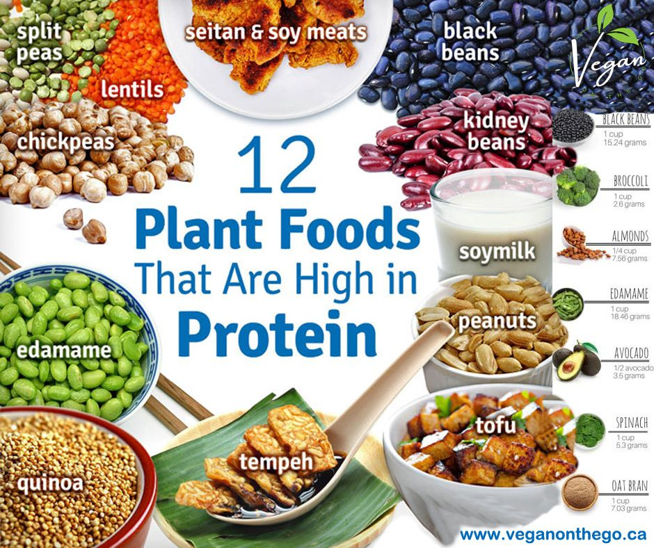 Vegetarian foods are not only tasty but it is rich in