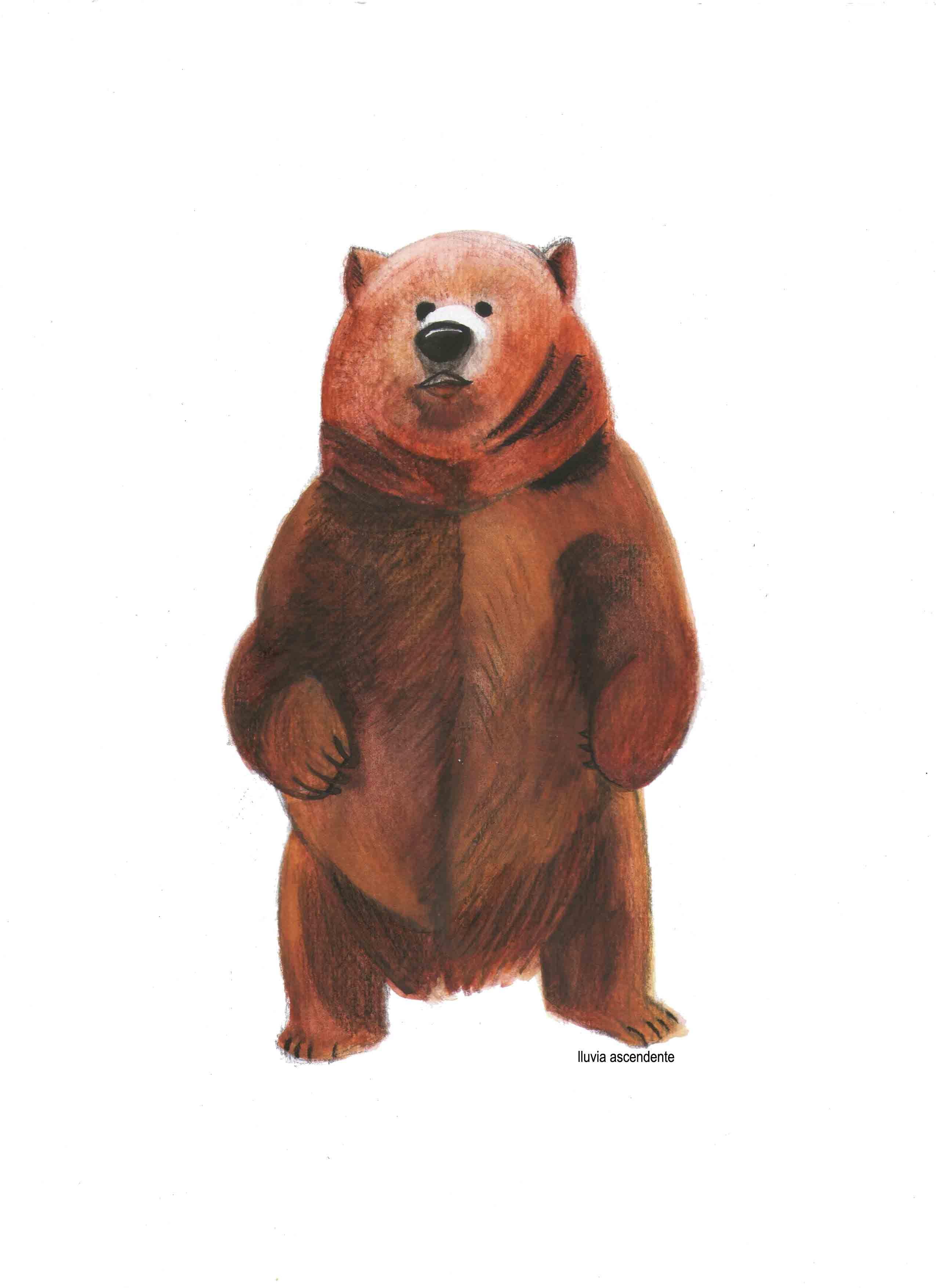 Día 16 El oso pardo 🐵 #osopardo #grizzly #acuarela #watercolor ...