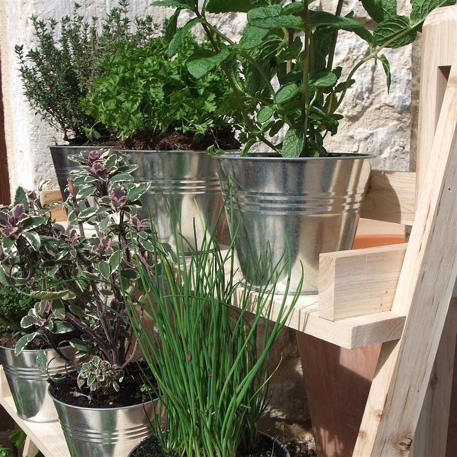 Three Tier Herb And Plant Theatre With Zinc Pot Set | Talco ...