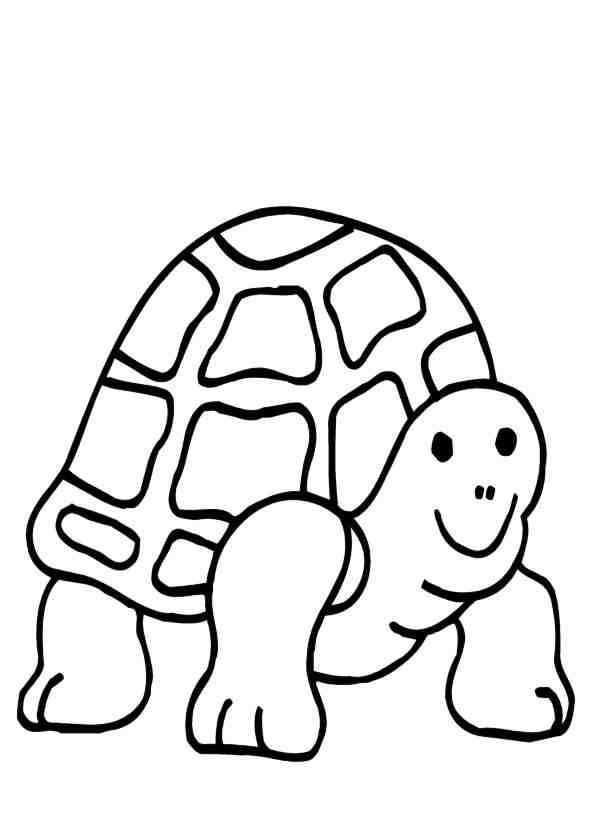 Yertle The Turtle Coloring Pages Free Dr Seuss Yertle The Turtle