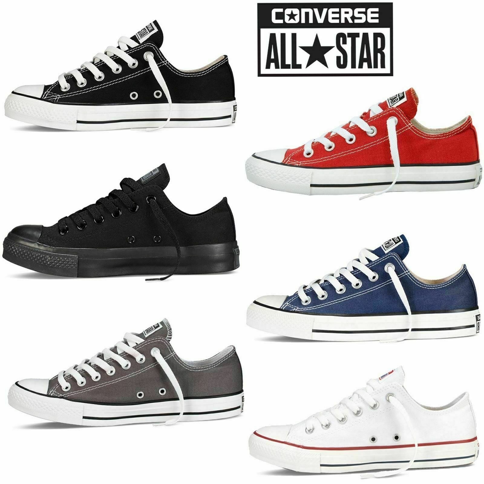 converse all star trainer ox donna