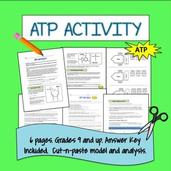 ATP Activity   Science for Secondary Grades: Biology ...