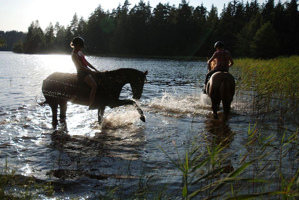 Kesäkuvakisa 2012 - heinäkuun kuvia | Yle Uutiset | yle.fi > Harri Purhonen