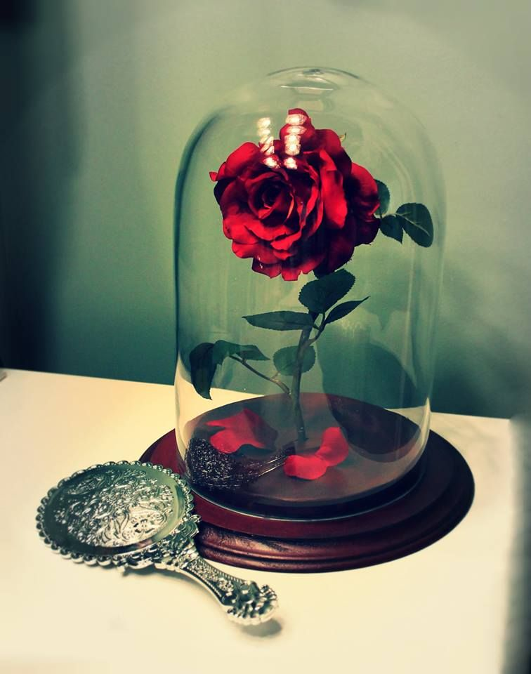An Enchanged Rose Prop Inspired By Beauty And The Beast The Good News Is I Have Found My