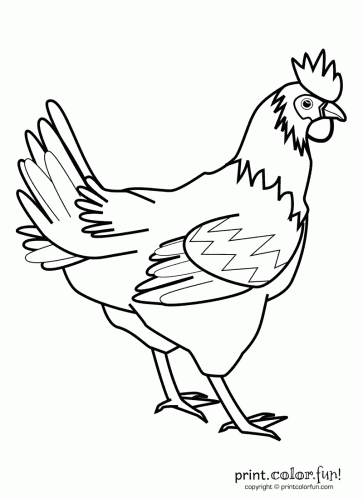 Rooster Stencils Printable | Rooster | Print. Color. Fun! Free ...