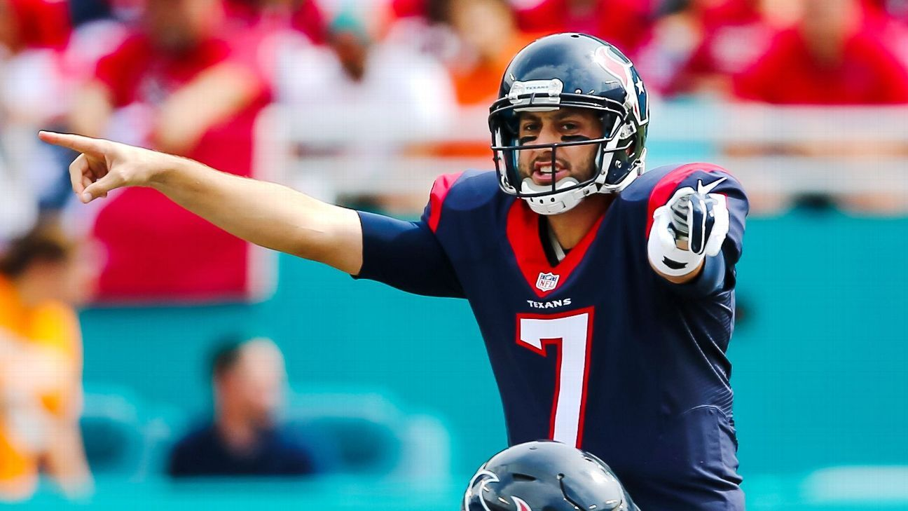 Hoyer Agrees To 1 Year Deal To Be Bears Backup Brian Hoyer Pretty Good Football Helmets