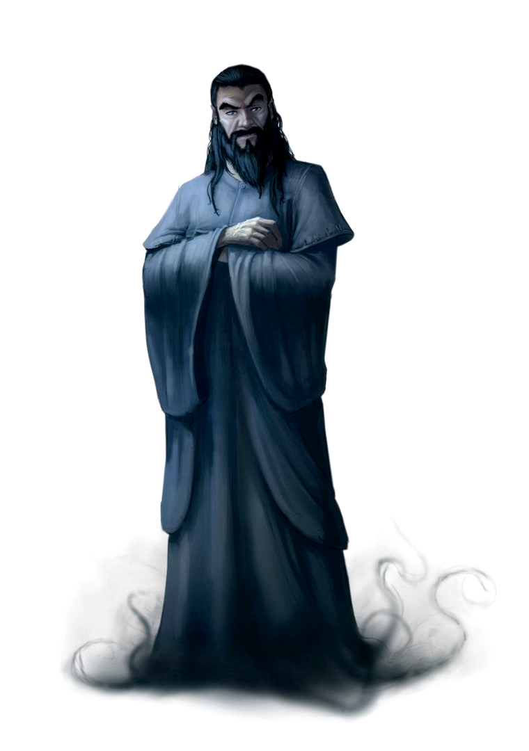 Male Human Wizard Black Beard Pathfinder Pfrpg Dnd D D 3 5 5e 5th Ed D20 Fantasy Human Male Character Portraits Dungeons And Dragons Characters