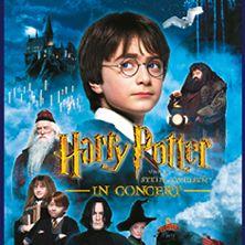 Harry Potter Und Der Stein Der Weisen Hdfilme